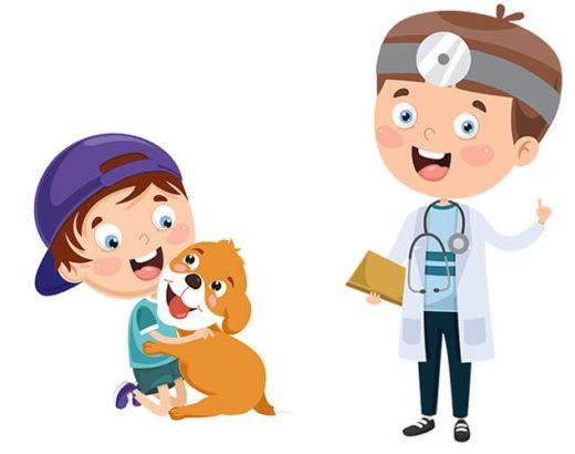 Weterynarz Lekarz Zwierząt